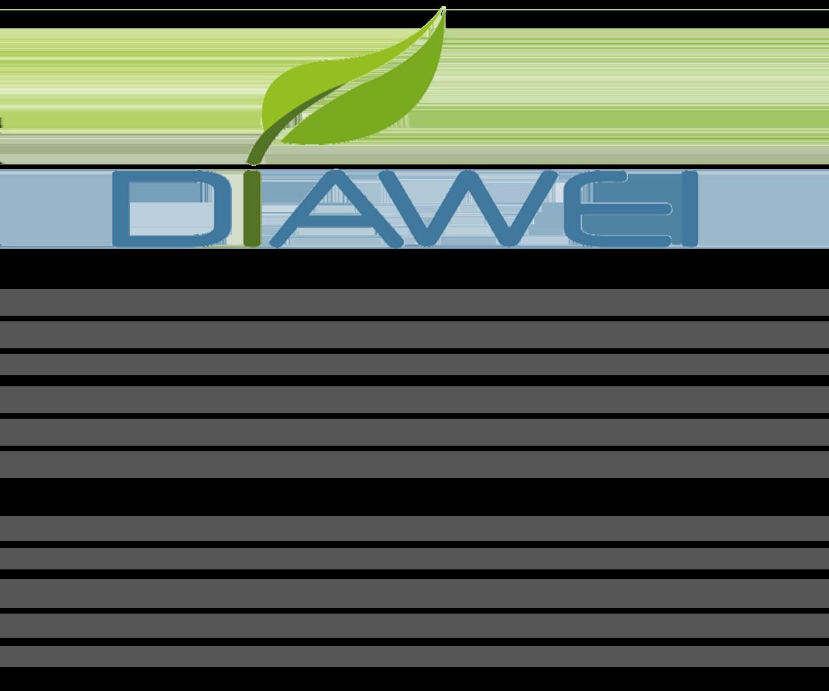 Aperçu 2021 - DIAWEI