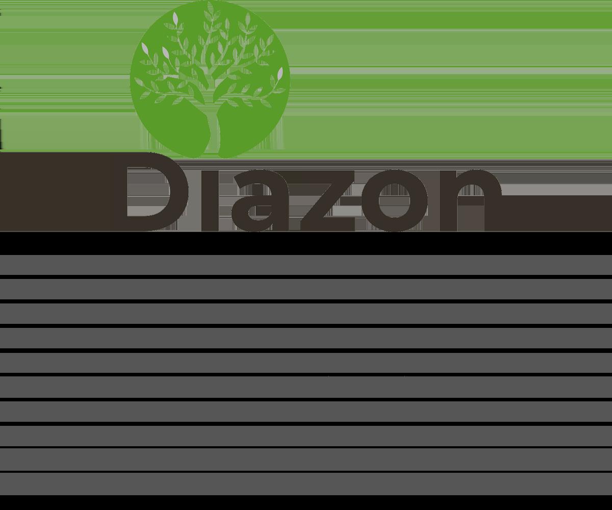 Aperçu 2021 - DIAZON